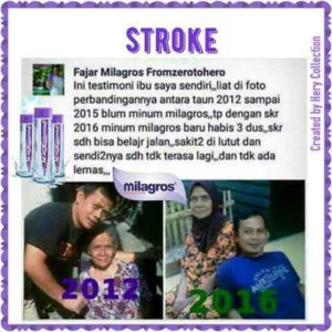 RAJABALI AGENCY INTERNETWORK INDONESIA - LOWOKWARU KOTA MALANG (65141) - stroke-3