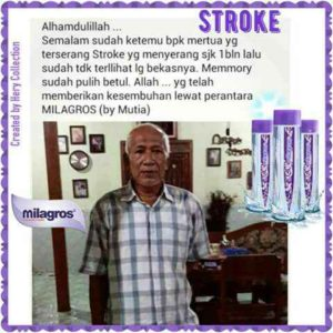 RAJABALI AGENCY INTERNETWORK INDONESIA - LOWOKWARU KOTA MALANG (65141) - stroke-4